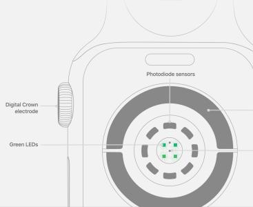 Apple Watch新功能:按住表冠可更快测量心率